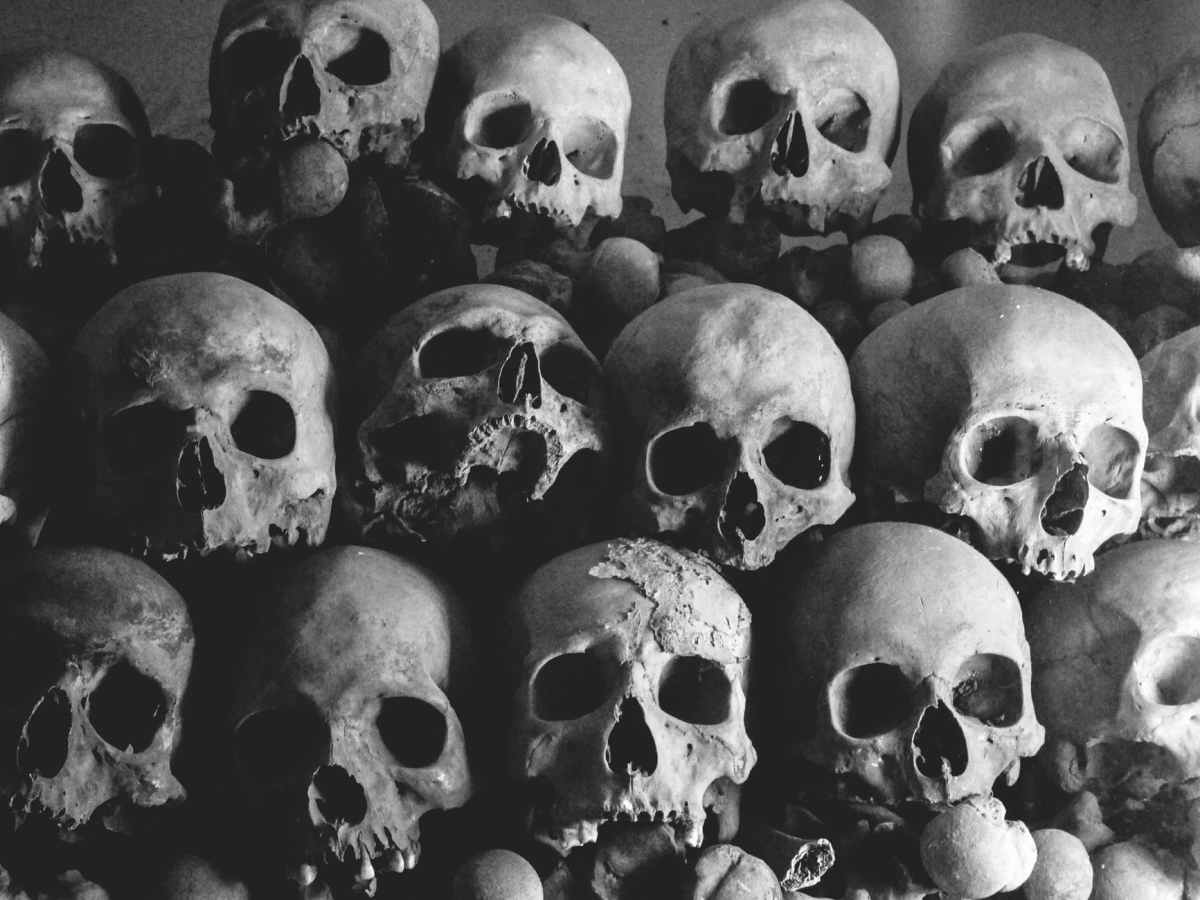 a pile of skulls